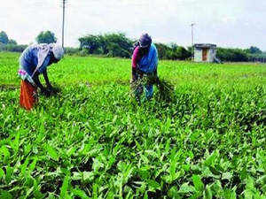 agri reform