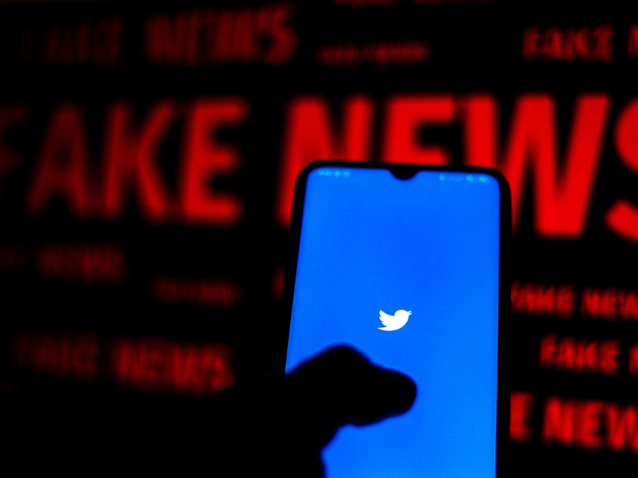 Weapons of mass disinformation: politics, polls, and social media's uphill battle against fake news