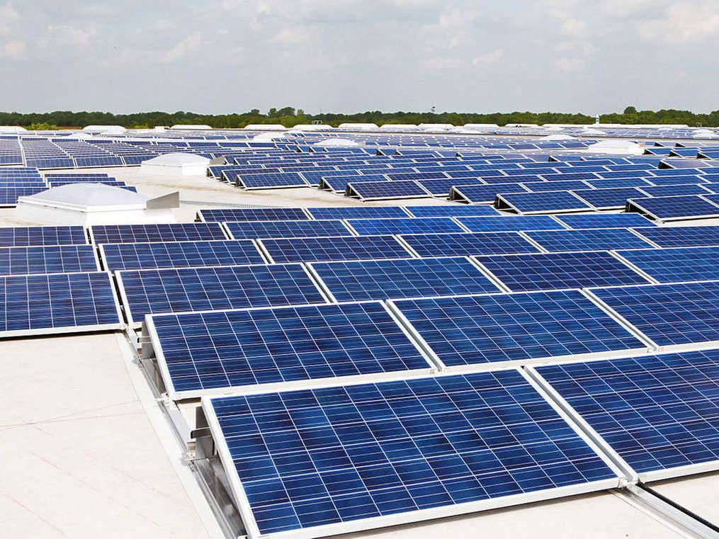 Power Minister RK Singh decodes India's renewed vigour in renewable energy