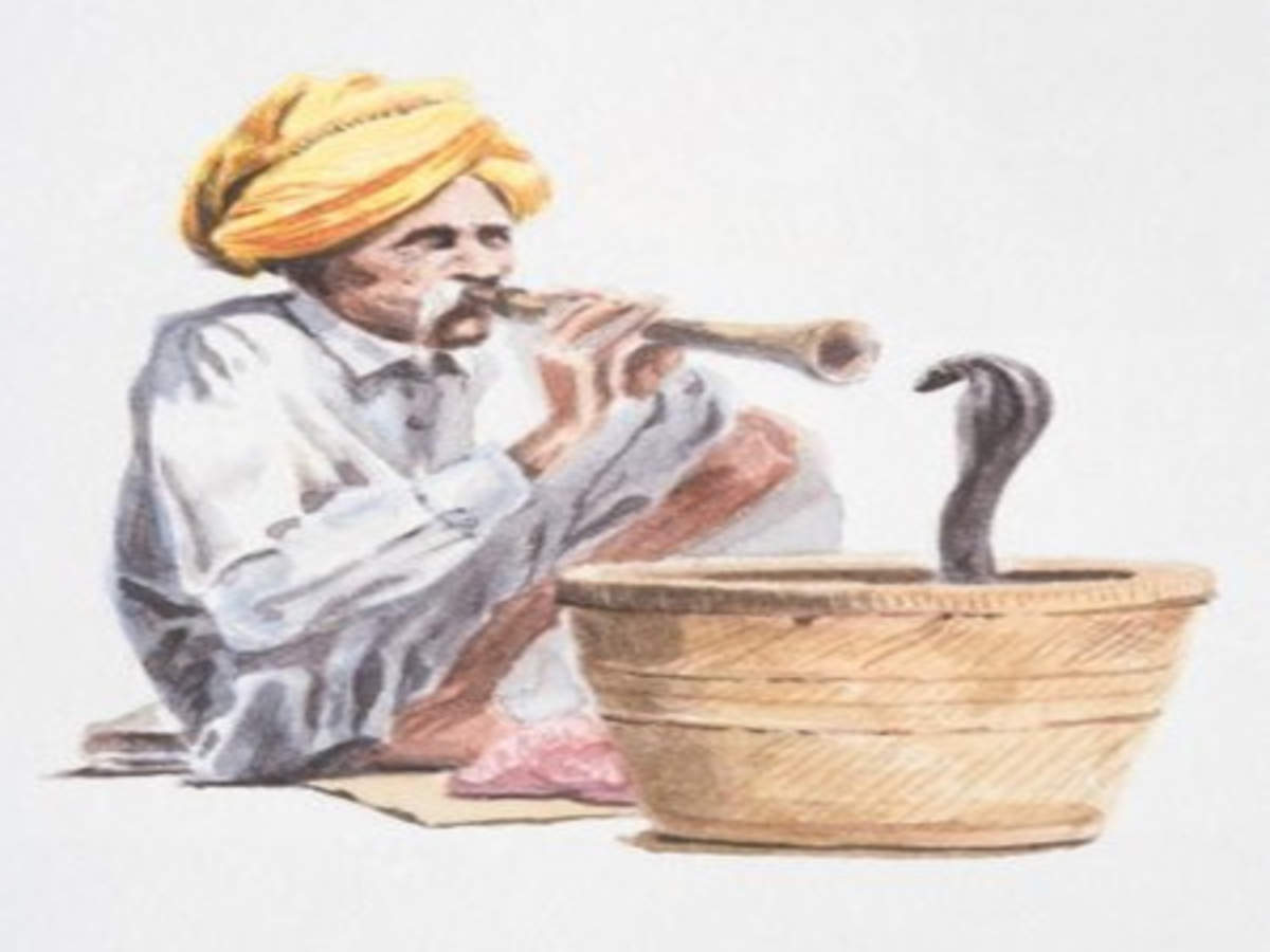 Uncharming life of snake charmers - The Economic Times