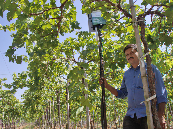 What keeps the crop healthy? Bengaluru startup Fasal's sensors dig deep to find the answer.