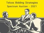 Spectrum auction 2021: divergent strategic priorities to set the tone for conservative bidding