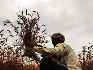 Kaveri Seeds becomes world's first seed producer to have over a lakh acres in production