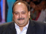 PNB Scam: CBI files an affidavit before Dominican HC, says Choksi is a fugitive from justice