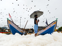 As pollutants contaminate India's INR46,662 crore seafood industry, the world turns up its nose