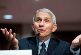Anthony Fauci says more 'pain and suffering' still ahead
