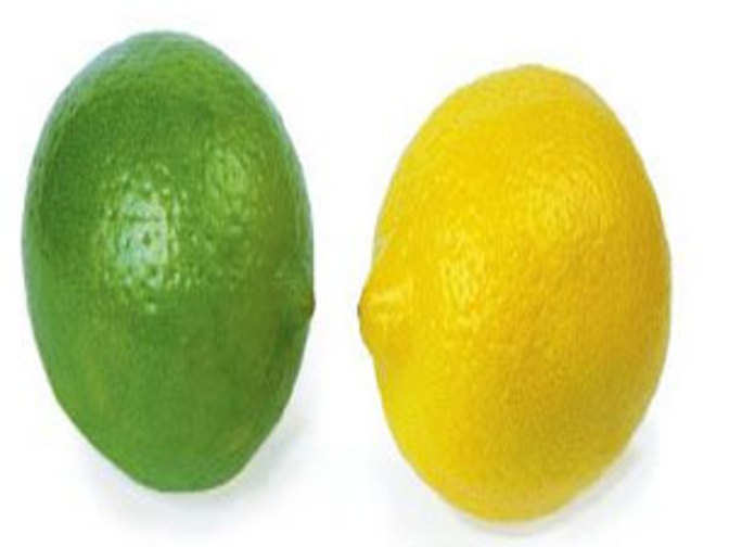 lemons vs limes The latest tweets from lemons vs limes (@lemons_vs_limes) lemons vs limes get into each others minds.
