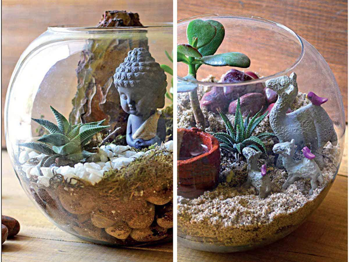 Terrarium The New Clean And Green Idea The Economic Times