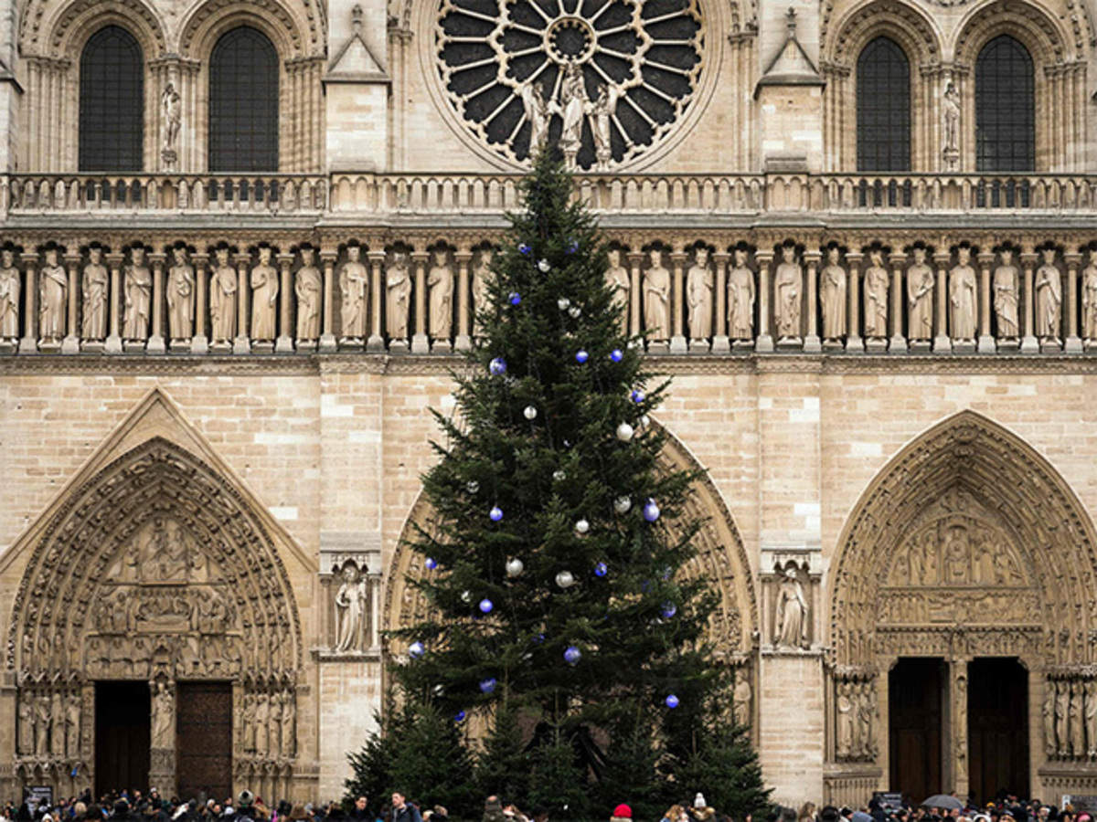 Christmas Horse Drawn Carriages Breath Taking Castles Spend A Magical Christmas In Paris The Economic Times