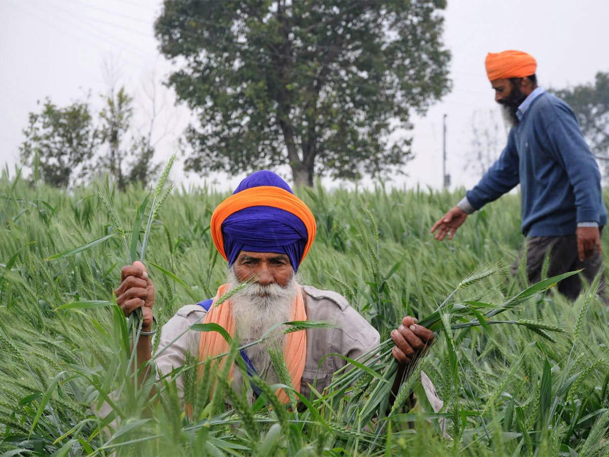 Pm Kisan Scheme Modi Govt To Give Rs 15 000 Crore To Farmers Under Pm Kisan Scheme The Economic Times