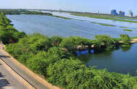 Coronavirus outbreak: Yamuna River water quality improves after India lockdown