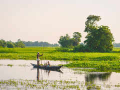 Why some farmers hope for floods in 'vanishing' Majuli