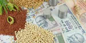 Trading hours for agri-commodities revised to 9 am-9 pm