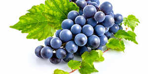 India's grape exports to Europe surge by 31%