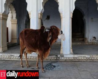 ET Daily Rundown: Modi gets in poll mode, Jet's cash problem