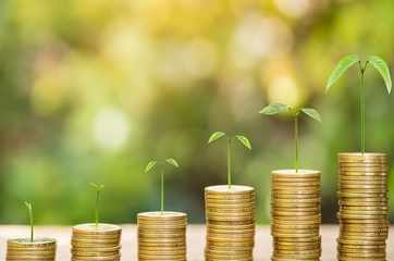 Best mutual funds to invest for 10 years