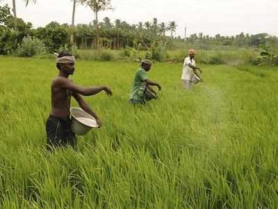 Kaleshwaram: EAC asks Telangana to compensate farmers under 2013 Land Acquisition Act
