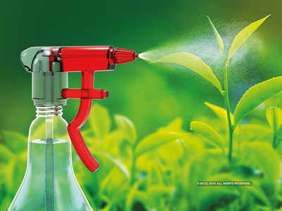 View: India needs new green industries to ensure economic growth