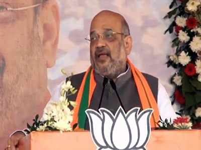 Will tweak Citizenship (Amendment) Act if needed, says Amit Shah
