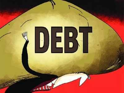 What constitutes Public Debt?