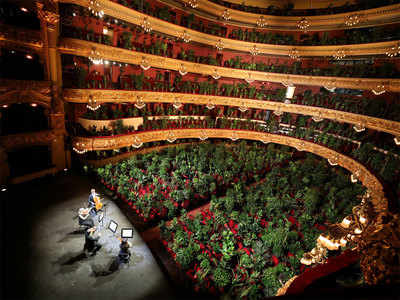 2,292 plants replaced humans for first concert at Barcelona opera house since Covid lockdown