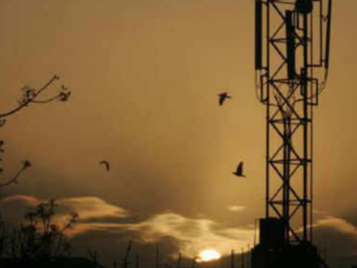 Telcos remind users to prefix '0' for landline to mobile calls from January 15