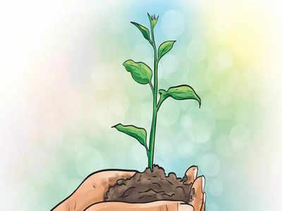 ICICI Prudential AMC to plant 50,000 tree saplings on behalf of its ESG fund investors