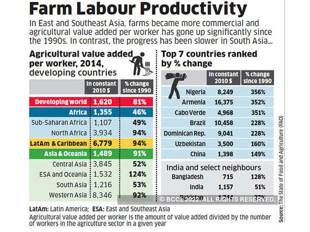 Farm labour productivity