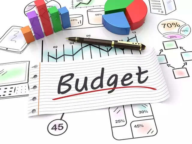 Government may address inverted duty structure in Budget - The ...