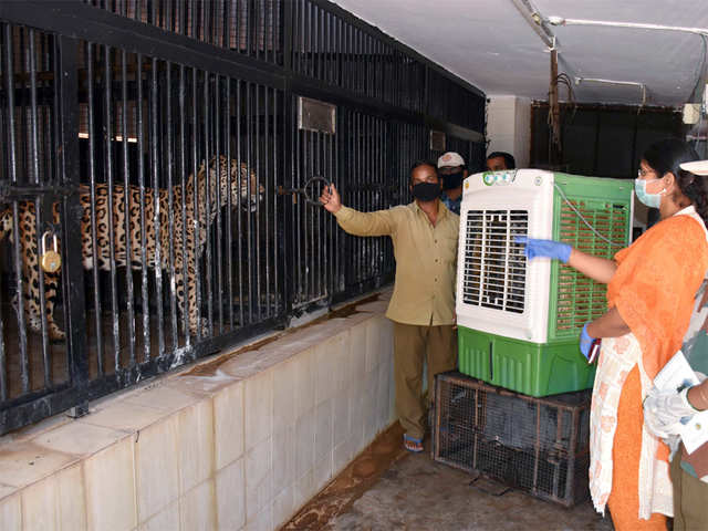 Telangana covid news: Zoos in Telangana asked to be high alert ...